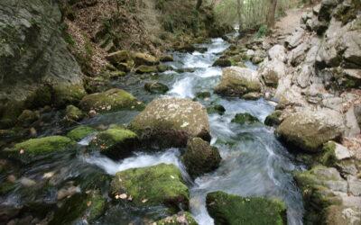 Estudiem la gea dels cursos fluvials on habita el Tritó del Montseny
